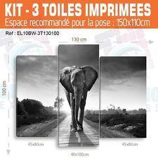 130x100- Kit 3 TOILES IMPRIMEE TABLEAU DECORATION - ELEPHANT- EL10BW-3T130100
