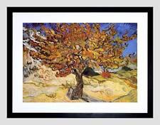VAN GOGH MULBERRY TREE 1889 OLD MASTER FRAMED ART PRINT MOUNT B12X2107