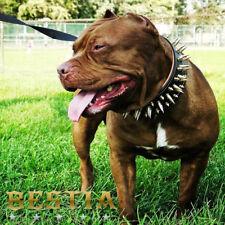 Bestia Big Boy Halsband. 100% Leder 100% Handarbeit. 100% Qualität. große Hunde!