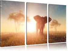 Großer afrikanischer Elefant in der Wüste 3-Teiler Leinwandbild Wanddeko Kunstdr