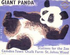 1939 London Zoo Giant Panda Poster  A3 Print