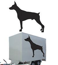 Pegatina perro DOBERMAN vinilo corte adhesivo. dog sticker vinyl cut
