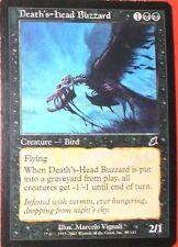 DEATH'S-HEAD BUZZARD - CREATURE BIRD - US - CARTE MTG MAGIC