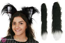CAT EARS AND TAIL SET SCHOOL BOOK WEEK FANCY DRESS COSTUME ACCESSORY KIT