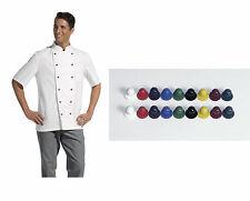 SET Giacca da chef incl. Bottoni Tg.42-64 Donna 36-58 Grembiule panettiere