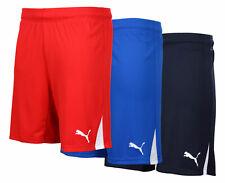 Puma Team Shorts S M L XL XXL XXXL 2XL 3XL blau rot navy kurze Hose Training