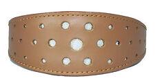 Tan Leather Whippet Collar Greyhound Collar Circle Glitter Design Dog Collar