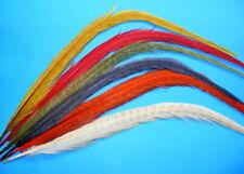 Fasan Schwanzfeder - gebleicht & gefärbt