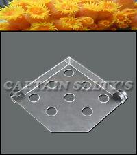 Captain Saltys Coral Reef Magnetic Invisible Corner Frag Rack (Medium) CS20006
