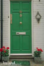 THE FAMOUS DOORS OF IRELAND GREEN FRONT DOOR IRISH REPRO POSTER