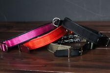 Keeper Collar Hidden Prong Collar with Leather Strap Leerburg