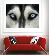 Affiche poster décoration murale Yeux de loup réf 75144925 (6 dimensions)