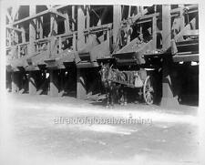 Photo 1905 San Fran Calif Coal Bunker & Dump Cart/Horse