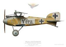 Print Albatros D.III, Ltn Wichard, Jasta 24, April 1917 (by D. Douglass)