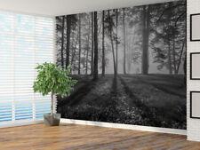 Bosque Paisaje Negro y Blanco Papel Pintado Foto Mural Pared (101302324)