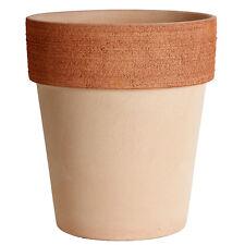 Vaso di terracotta per piante ebay for Vasi in terracotta economici