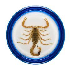 *NEW* Razor Pocket Pros Ultra Pro STINGER Scorpion YoYo Yo-Yo Yo