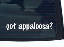 got appaloosa? HORSE HORSES BREED FUNNY DECAL STICKER ART WALL CAR CUTE