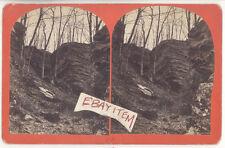 C 1879 RARE STEREOVIEW PANAMA ROCKS NEW YORK Chautauqua Tourism B