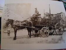 1915 Ice Cream Horse Drawn Wagon Brooklyn Park Slope P