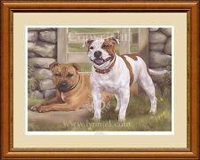 Staffordshire BULL Terriers NUOVA EDIZIONE LIMITATA STAMPA