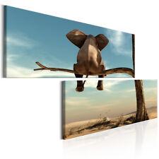 Leinwand Bilder xxl Wohnzimmer Wandbild Elefant auf dem Baum 2 tlg. g-B-0033-b-r