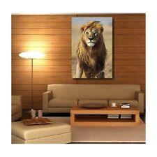 Tableaux toile déco rectangle lion 61358827