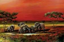 Afrika - Elephanten - Tier - Poster Druck - Größe 91,5x61 cm