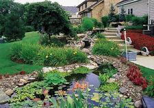Landscape Gardening 30 Books CD Landscaping Garden Home Grounds Gardener Nature