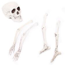 BULK HALLOWEEN PROP HUMAN BONES REMAINS SKULL POSEABLE LEGS ARMS DECORATION LOT