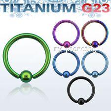 G23 Titanio Massiccio Anodizzato Cerchio con Palla Chiuso Orecchino a Setto 16G