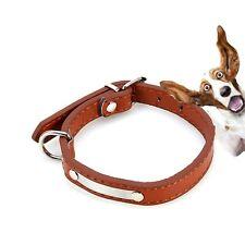 COLLARE cane strass XS Piccolo Cucciolo Gem regolabile Francese Jack Barboncino Yorkie