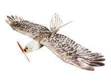 RC Plane Free Shipping EPP Airplane Model Mini Eagle Wingspan 1200mm Slow Flyer