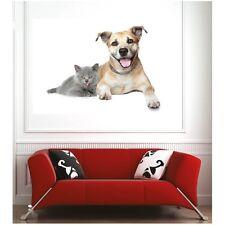 Affiche poster chat et chien  58877705 Art déco Stickers