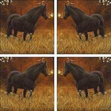 Horse Accent & Decor Tile Set Ryan Ceramic Backsplash Equine Art EWH-LMR001