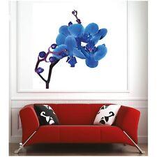 Affiche poster orchidée bleu 74063533