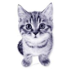 Kitten Cute Kitty Car Vinyl Sticker - SELECT SIZE