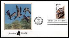 Vögel. Rauchschwalbe. FDC. USA 1987