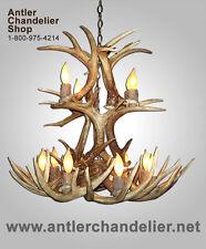 REAL ANTLER WHITETAIL CASCADE DEER CHANDELIER, LIGHTING , 12 LAMPS WTRC12lt-3