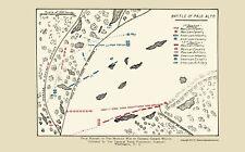 Old War Map - Palo Alto Battle Map 1892 - 23 x 36.89