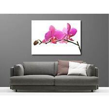 Tableaux toile déco rectangle orchidée 8078510