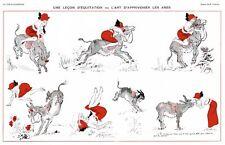 French Pinups: La Vie Parisienne - Girl & Donkey - Prejelan - 1913