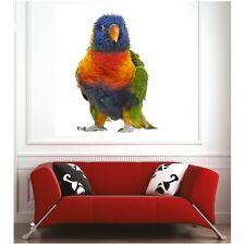 Affiche poster perroquet 64912285 Art déco Stickers