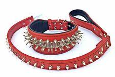 Set Collare e Guinzaglio. Punte & acciaio inox, ampio 2.8 pollici. realizzato in Europa!