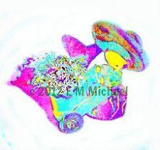 My Original Digital Art Photo Picture For Facebook Myspace Websites Commercial