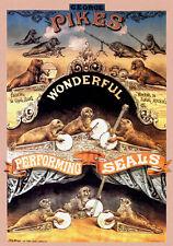 1959 Bertram Mills Circus A3 Poster Reprint