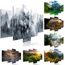 WALD GEBIRGE LANDSCHAFT NATUR Wandbilder xxl Bilder Vlies Leinwand g-A-0139-b-m