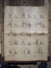 MUNCHENER BILDERBOGEN Circa. 1880/1890 PLANCHE Nr 412