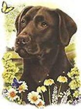 Chocolate Labrador Retriever Burnett Pick Size T Shirt Youth Small-6 X Large
