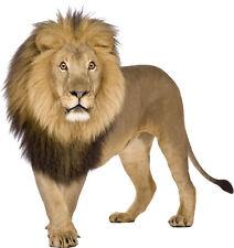 Sticker animal Lion (plusieurs dimensions)